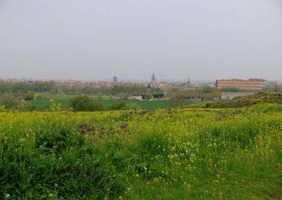 Visita castillo arabe (1)